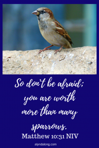Matthew 10:31, you are more valuable than sparrows, God' truth